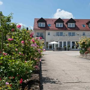 Hotel Pictures: Felshof - Weingut & Gästehaus, Sommerhausen