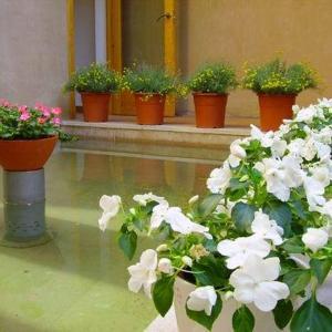 Hotel Pictures: Hotel Castillo de Ateca, Ateca