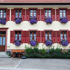 Hotel Pictures: Haus am Bühl, Schönau im Schwarzwald