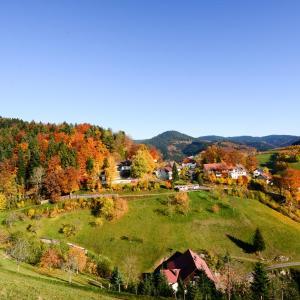Hotel Pictures: Café Pension Waldfrieden, Bad Peterstal-Griesbach