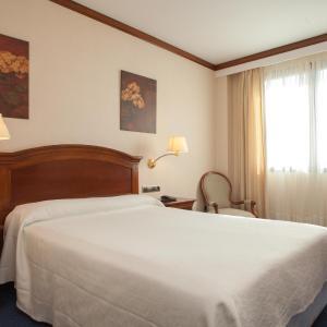 Hotel Pictures: Hotel Villa De Almazan, Almazán
