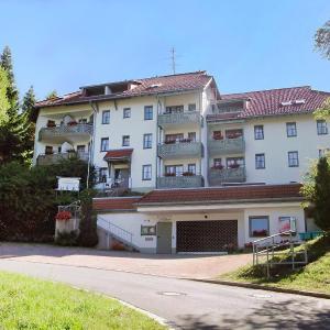 Hotel Pictures: Apartment Schauinsland.9, Todtnauberg