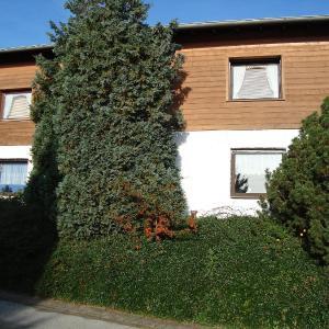 Hotel Pictures: Apartment Haus Kalscheuer, Kleinhau
