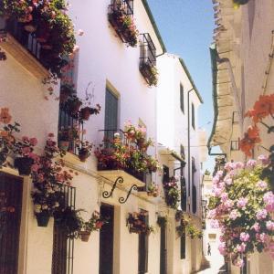 Hotel Pictures: La Posada Real, Priego de Córdoba