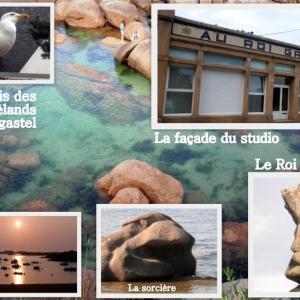 Hotel Pictures: Au Roi Gradlon, Trégastel