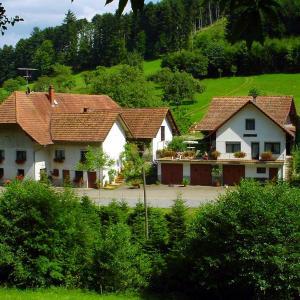 Hotel Pictures: Müllerleile-Hof, Haslach im Kinzigtal