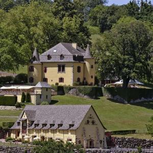 Hotel Pictures: Château de Salles, Vezac