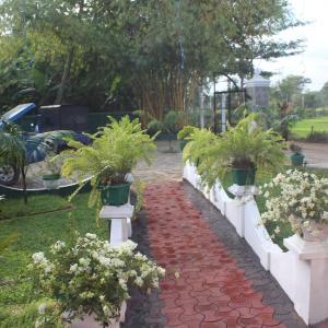 ホテル写真: Ravindu palace, Embilipitiya