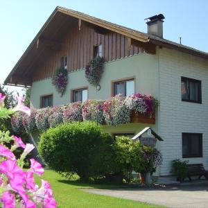 Hotellikuvia: Gästehaus Jedinger, Oberhofen am Irrsee
