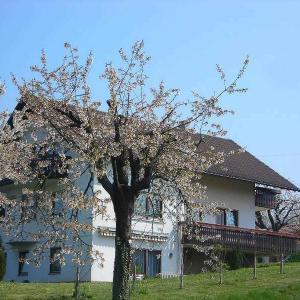 Hotelbilleder: Kirschenhof, Bad Bellingen