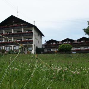 Hotel Pictures: Landgasthof Waldfrieden, Wildensee