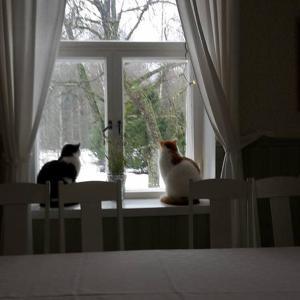 Hotel Pictures: Hostel Panget, Dragsfjärd