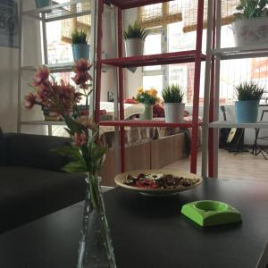 Hotel Pictures: Sertar Sukhavati Bloom Youth Hostel, Sertar