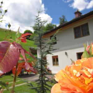 Hotelbilder: Heidi's Schlummerkiste, Breitenau am Hochlantsch