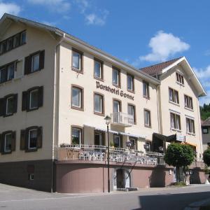 Hotel Pictures: Parkhotel Sonne, Schönau im Schwarzwald