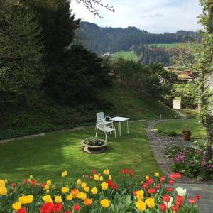 Hotel Pictures: BnB Haus Wagner, Langnau
