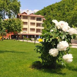 Фотографии отеля: Hotel Delta, Ognyanovo