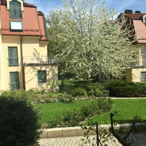 Hotel Pictures: Ferienwohnung in Bad Saarow, Bad Saarow