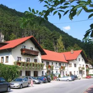Hotellikuvia: Gasthof zur Bruthenne, Weissenbach an der Triesting
