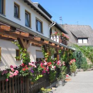 Hotelbilleder: Gasthaus Tannengrün, Nachtsheim