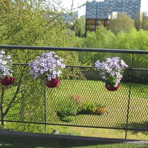 Hotelbilder: Comchezsoi, Charleroi