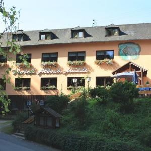 Hotel Pictures: Waldhotel - Landgasthof Albachmühle, Wasserliesch