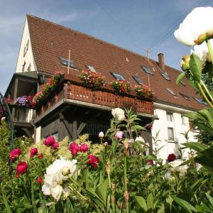 Hotel Pictures: Pension Bader, Löffingen