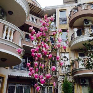 Φωτογραφίες: Mellia Residence, Ράβντα