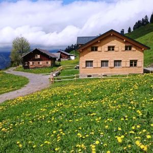 Hotellbilder: Berghof, Bezau