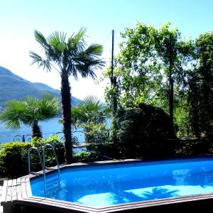Hotel Pictures: Fantastic View in Ticino Switzerland, Brissago