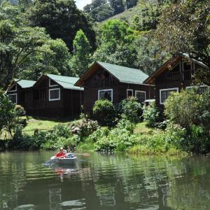 Hotelfoto's: Sueños del Bosque Lodge, Providencia