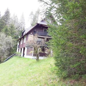 Hotel Pictures: Schwarzwaldherz, Feldberg