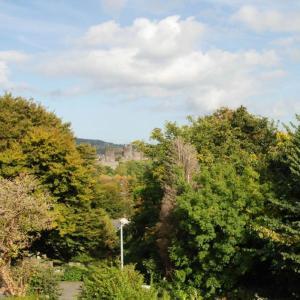 Hotel Pictures: Bron y Graig, Conwy