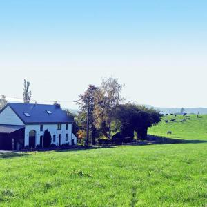 酒店图片: La petite maison dans la prairie, Mierchamps