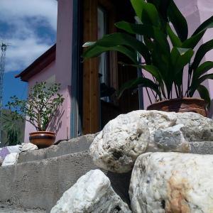 Hotellikuvia: Guest house Luka, Kazbegi