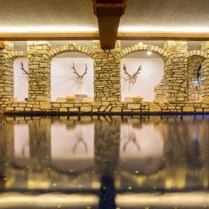 Hotel Pictures: Aktiv & Spa Hotel Alpenrose, Schruns
