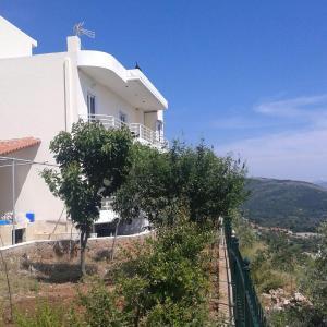 Zdjęcia hotelu: Villa Filip, Vuno