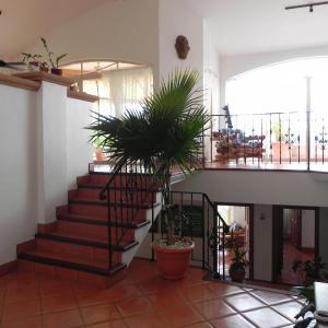 Hotel Pictures: Villa Camellia, Playa Hermosa