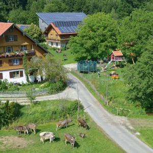 Hotelbilleder: Tannenhof Epple, Opfenbach