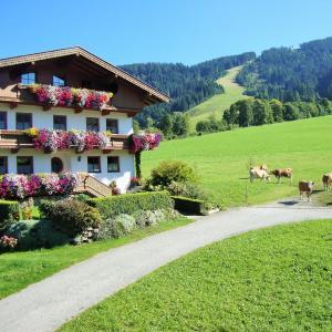 Foto Hotel: Sixenhof, Niederau