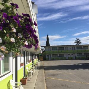 Hotel Pictures: The Cedars Motel, Princeton