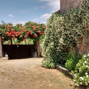 Hotel Pictures: Casa Rural Maria Bargiela, A Picaraña