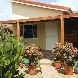 Zdjęcia hotelu: Bubali Studio, Palm-Eagle Beach