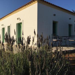 Hotel Pictures: Villa Lemonia - Guest House, Aroniadika