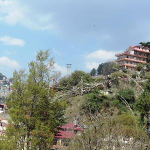 Fotografie hotelů: Shimla View Home, Shimla
