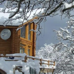 Hotellbilder: The Green Pine Chalet, Razlog