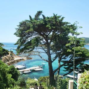 Hotel Pictures: Cabanon écologique ile du levant, Île du Levant