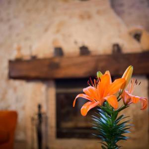 Hotel Pictures: Casa Rural Casona la Beltraneja, Belmonte