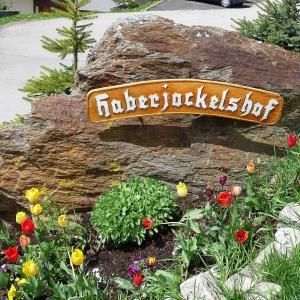 Hotel Pictures: Haberjockelshof, Unterbränd