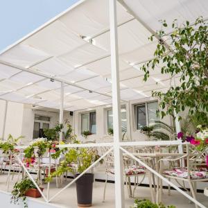 Hotellikuvia: Hotel Ivanoff, Svishtov